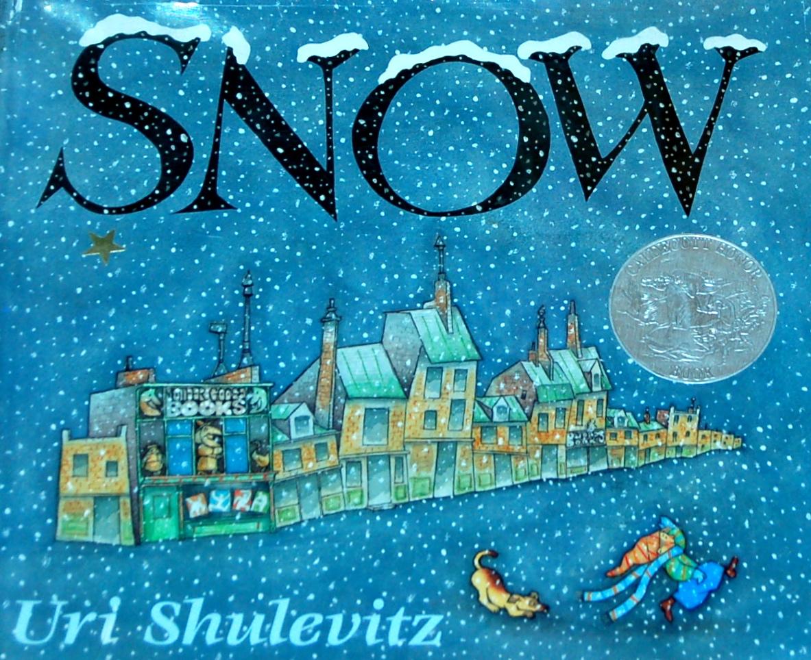 snow-book