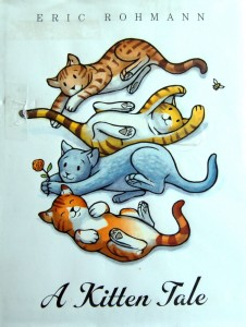 Kitten tale