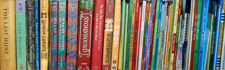 *bookshelf books